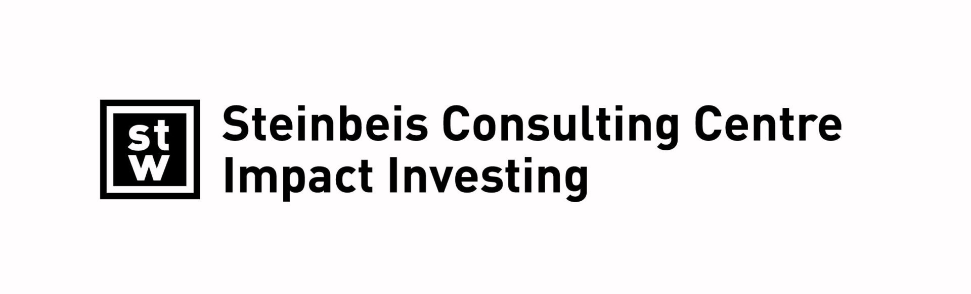 Steinbeis Consulting Impact Investing